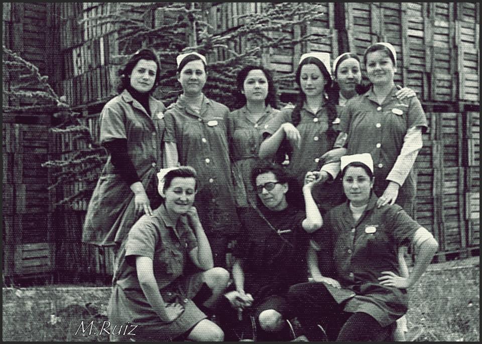 Grupo de Trabajadoras de varios pueblos del Valle de Lecrín en la conservera de Falces